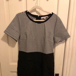 Brand new Loft dress, size 14